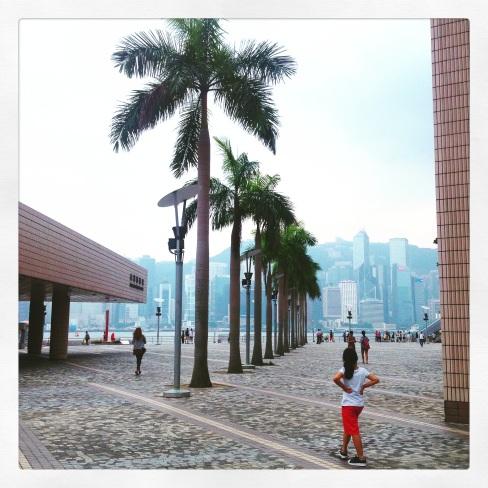hongkongpalm